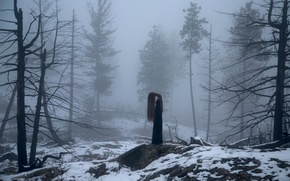 Picture forest, girl, snow, fog, Lichon