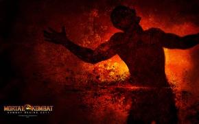 Picture Mortal Kombat, Fight