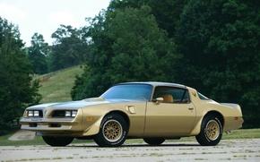 Picture vintage, muscle, muscle car, classic, pontiac, trans am, ta66