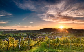 Picture twilight, cathedral, Germany, sunset, wine, hills, dusk, village, sunlight, church, Tübingen, sunrays, farmland, vineyards, Unterjesingen, …