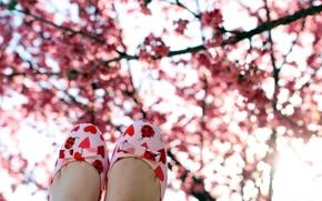 Wallpaper mood, boots, spring, garden