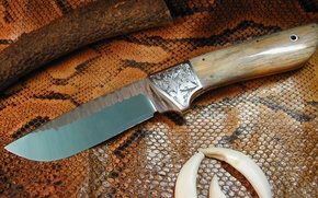 Wallpaper leather, knife, snakes, edged weapons