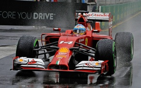 Picture Ferrari, F14