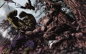 Picture battle, wolverine, Hulk, marvel, comic, super heroes, comics, Wolverine, hulk