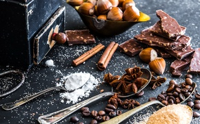 Picture coffee, chocolate, sugar, nuts, cinnamon, powdered sugar, spices, anise star, Natalia Klenova