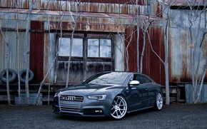 Picture Audi, Audi, coupe, before, sports car