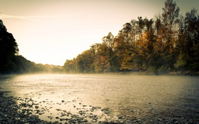 Picture autumn, forest, fog, river, morning