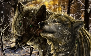 Picture forest, snow, fiction, wolf, wolf