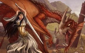 Wallpaper posts, dragon, skull, girl, sword, art, the victim