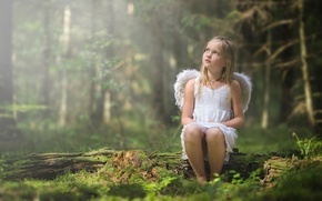 Picture forest, wings, angel, girl