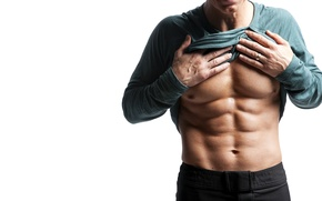 Picture model, muscles, abdominal
