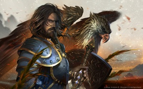 Picture bird, eagle, people, art, male, World of Warcraft, blizzard, warcraft, wow, lothar anduin