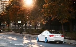 Picture white, BMW, BMW, white, Blik, E92, IND, autumn. the sun