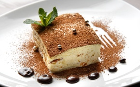Picture background, Wallpaper, food, chocolate, cake, dessert, widescreen, cake, sweet, full screen, HD wallpapers, tiramisu