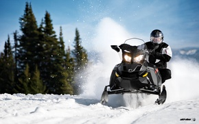 Picture Snow, Snow, Forest, Snowmobile, Skidoo, Snowmobile, Ski-Doo