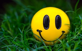 Picture grass, macro, smile, smiley