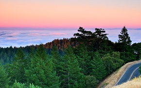 Picture road, forest, clouds, sunset, mountains, fog, the ocean, ate, Bay, pine, california, CA, quiet
