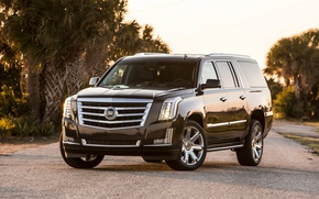 Picture Cadillac, Escalade, 2015
