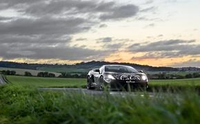 Picture Lamborghini, Superleggera, Gallardo, Road