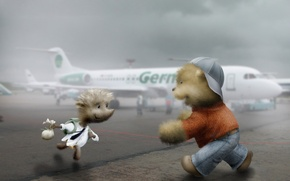 Picture meeting, Hedgehog, airport, bear