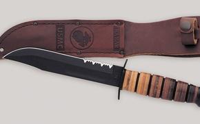 Picture knife, sheath, Dagger