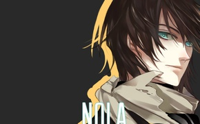 Picture anime, art, guy, God, Noragami, Yato