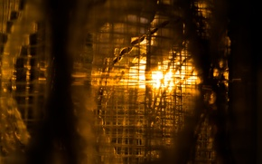 Picture Sunset, Golden, View, Interior, Window, Outside, Curtain, Net