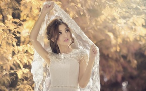 Picture Asian, the bride, veil