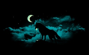 Picture night, fragments, darkness, the moon, wolf, werewolf, werevolf, mater