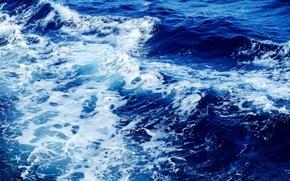 Picture wave, foam, water, Sea