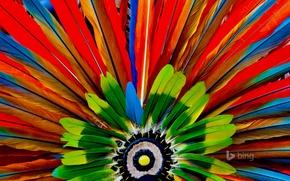 Picture macro, paint, feathers, the Aztecs, headdress