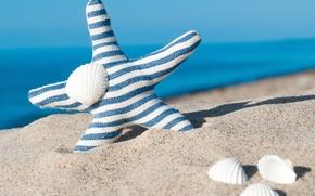 Picture sand, sea, beach, shell, summer, beach, sea, blue, sand, starfish, seashells