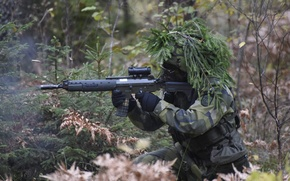 Picture forest, weapons, soldiers, Swedish Army