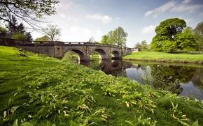 Picture grass, landscape, bridge, river