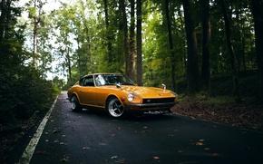 Picture wheels, yellow, Datsun, 240Z, hrome