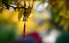 Picture background, color, bell