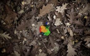 Wallpaper Mac, Apple, leaves