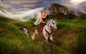 Picture girl, horse, dog, rider, veil, Greyhound