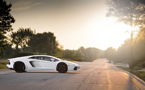Picture road, white, trees, sunset, profile, white, wheels, lamborghini, black, Blik, aventador, lp700-4, Lamborghini, aventador, black …