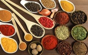 Picture walnut, bow, plates, pepper, spices, garlic, seasoning, bowls, curry, cumin, nutmeg
