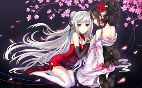 Picture look, smile, girls, surprise, petals, Sakura, art, devildogs