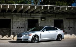 Picture Jaguar, Silver