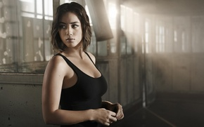 Picture frame, Mike, brunette, hairstyle, the series, agent, TV Series, Chloe Bennet, Agents of Shield, Agents …