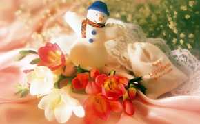 Picture flowers, new year, snowman