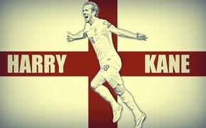 Picture Harry Kane, Tottenham Hotspur, Harry Kane