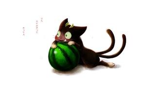 Picture cat, anime, watermelon, art, Ao no Exorcist, Blue exorcist, Blue Exorcist, Kuro