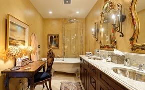 Picture home, luxury, bathroom