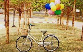 Picture greens, grass, balls, trees, bike, balloon, background, tree, widescreen, Wallpaper, mood, wheel, wallpaper, basket, widescreen, …