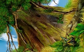Wallpaper Tree, figure, grass, grasshopper