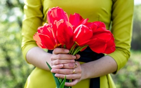 Picture girl, flowers, spring, hands, tulips, belt, detail, bow, manicure